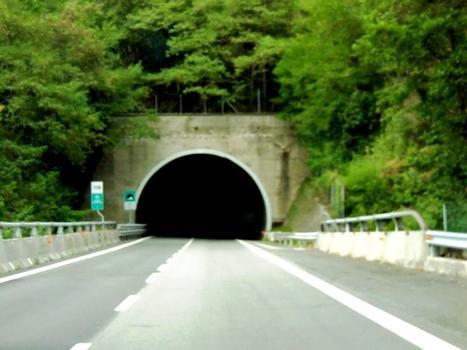 Vapea Tunnel northern portal