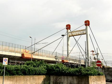 Palizzi Cable Stayed Bridge