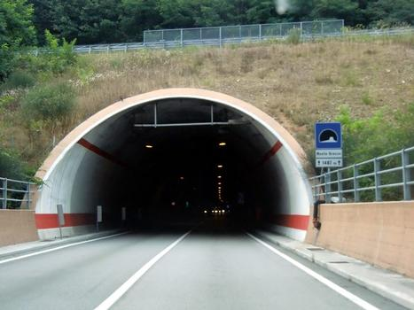 Monte Grosso Tunnel, southern portal