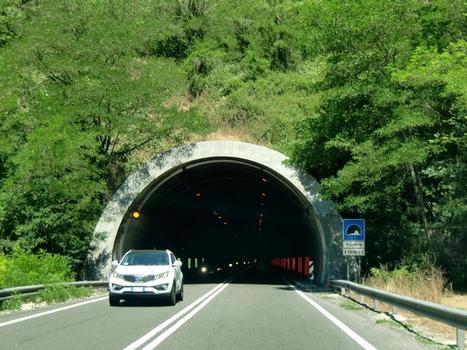 Triponzo-Tunnel