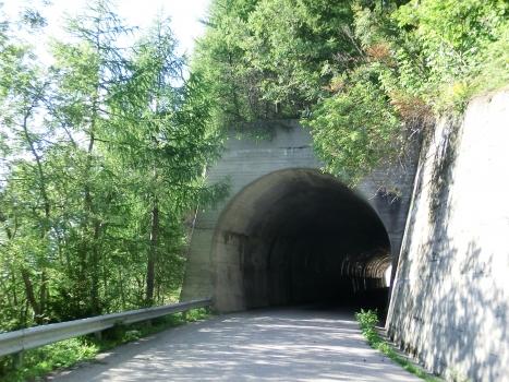 Tunnel de Monte Colmo I