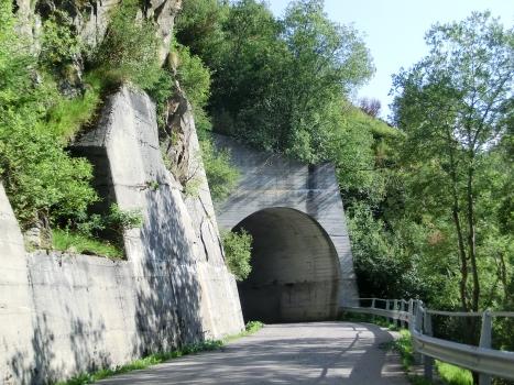 Tunnel de Monte Colmo III