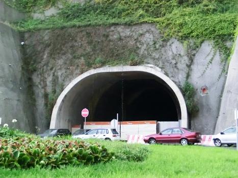 Estreito de Câmara-Jardim da Serra 1 Tunnel southern portal