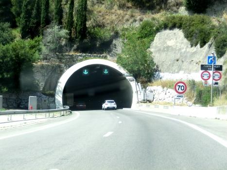 Tunnel de Canta-Galet eastern portal