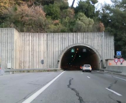 Tunnel de Castellar