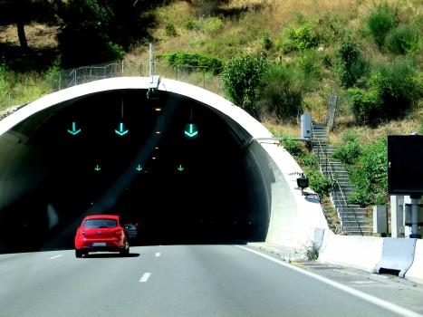 Tunnel de Pessicart