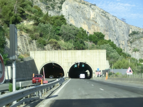 Tunnel du Peyronnet western portals