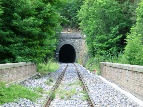 Tunnel de Colombera