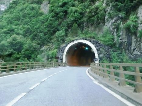 Tunnel du Reveston