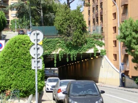 Saint-Roman Tunnel western portal