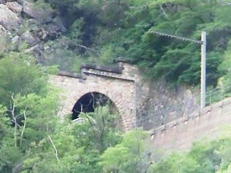 Tunnel de Peug