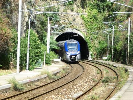 Tunnel Rognoux