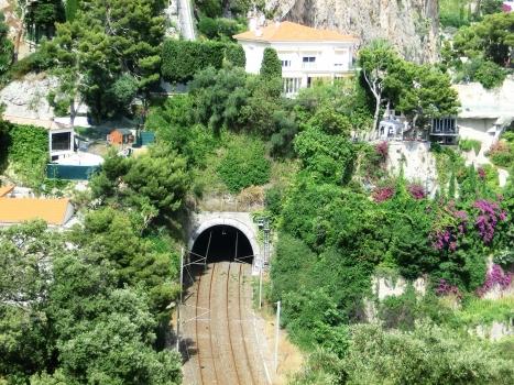 Tunnel de Saint-Laurent