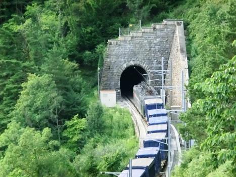 Tunnel d'Axenberg