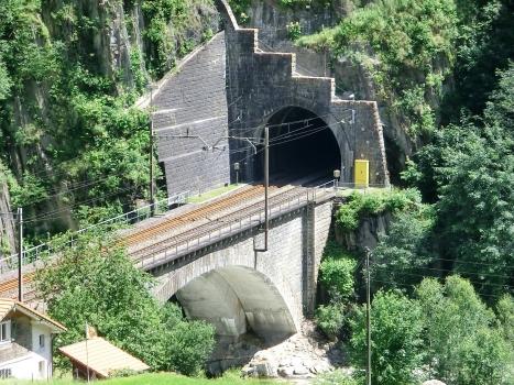 Wattinger Kehrtunnel lower portal and Untere Wattinger Brücke