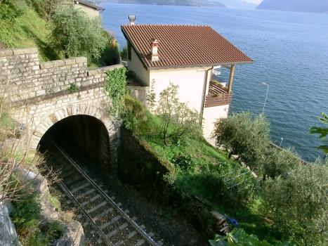 Vello Tunnel northern portal