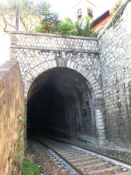 Vello Tunnel southern portal