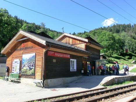 Gare de Fürgangen-Bellwald