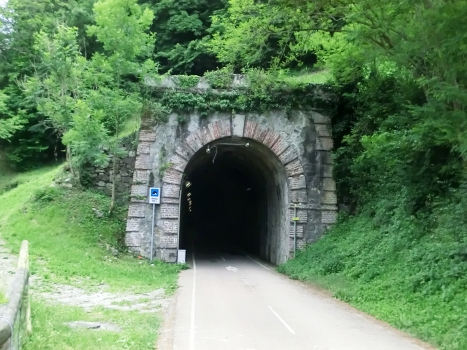 Tunnel d'Antea
