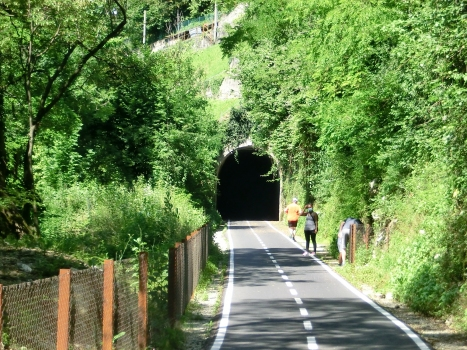 Tunnel Camel