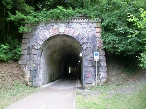 Dei Lameri Tunnel northern portal