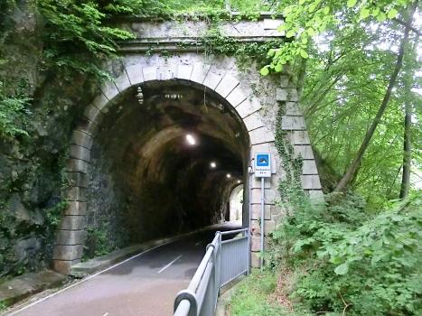 Tunnel de Pontesecco