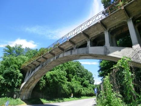 Pont sur le Rino
