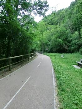 Ligne ferroviaire de la Valle Brembana