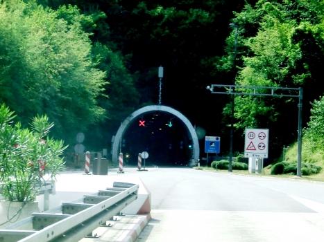 Učka - Monte Maggiore tunnel eastern portal