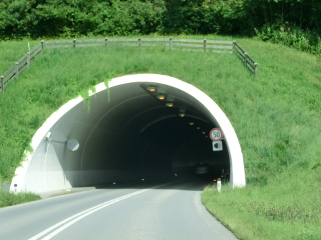 Tunnel Reith