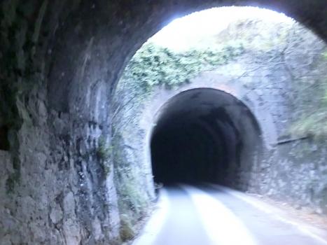 Tunnel de Miseglia I