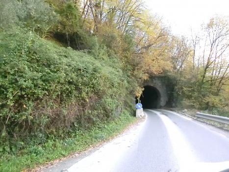 Tunnel Miseglia III