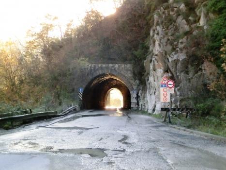 Tunnel de Tarnone