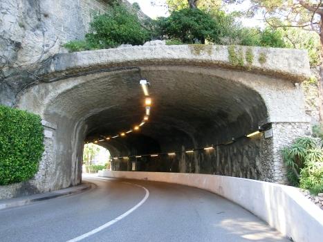 Tunnel Fort Antoine