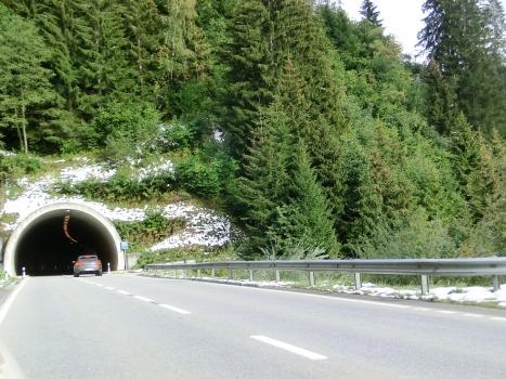 Tunnel de Crestas