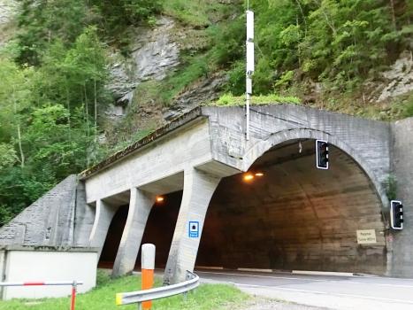 Tunnel de Passmal