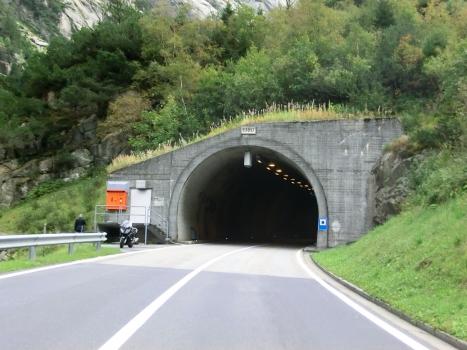 Tunnel Staubenden