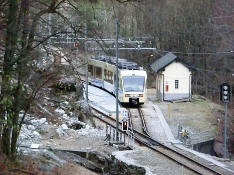 Vigezzina-Centovalli Railway at Olgia Station