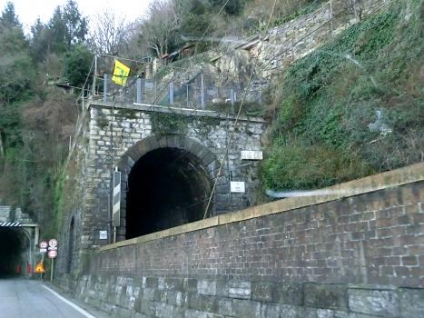 Biosio Tunnel southern portal