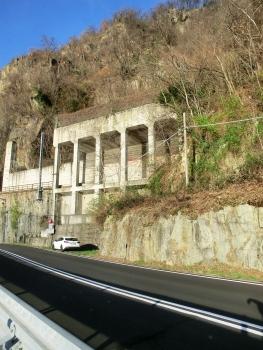 Tunnel Colmegna