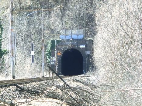 Colmo di Dazio Tunnel northern portal