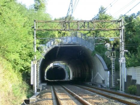 Tunnel de Del Pino