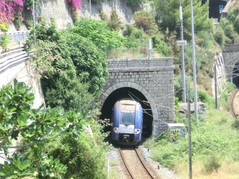 Tunnel Dogana North