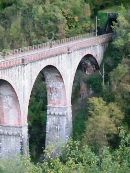 Eisenbahnbrücke Edron