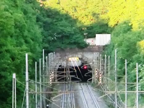 Ferran Tunnel western portal