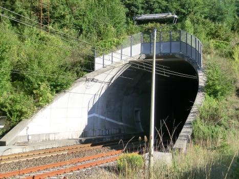 Tunnel de Grotto