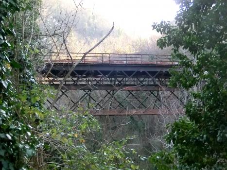 Pont de Lamone V