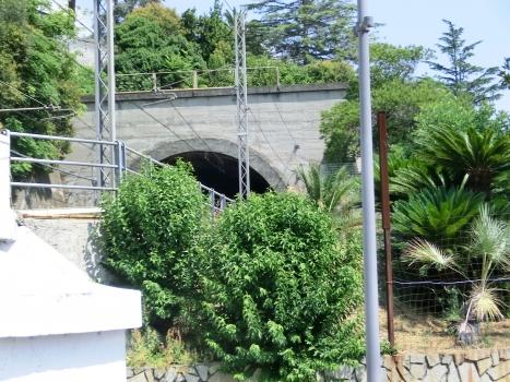 Tunnel Larestra