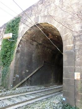Monica Tunnel northern portal