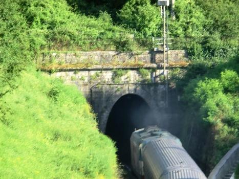 Tunnel de Montarioso
